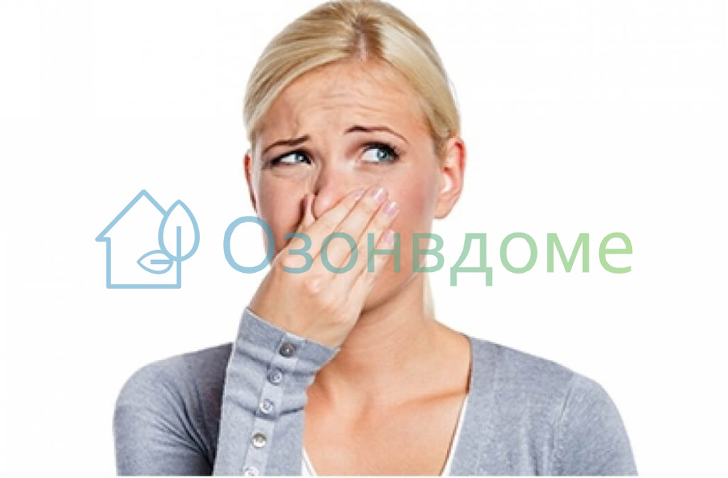 запах после дезинсекции